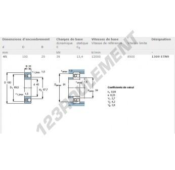 1309-ETN9-SKF - 45x100x25 mm