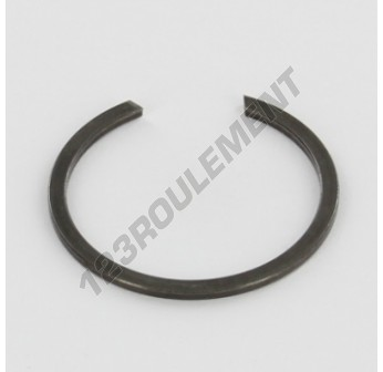 BR22-INA - 23x1.2 mm