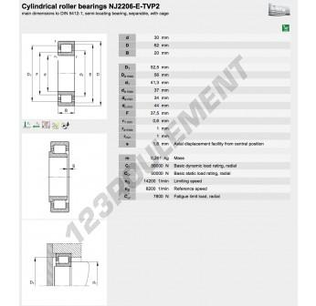 NJ2206-E-TVP2-C3-FAG